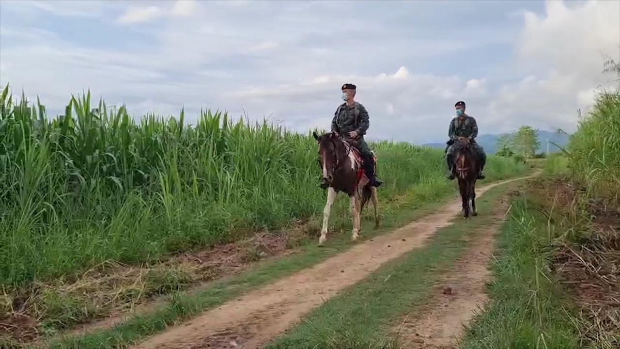 เชียงใหม่ ทหารฝึกทบทวนการควบคุมม้า เพื่อใช้ลาดตระเวนแนวชายแดน