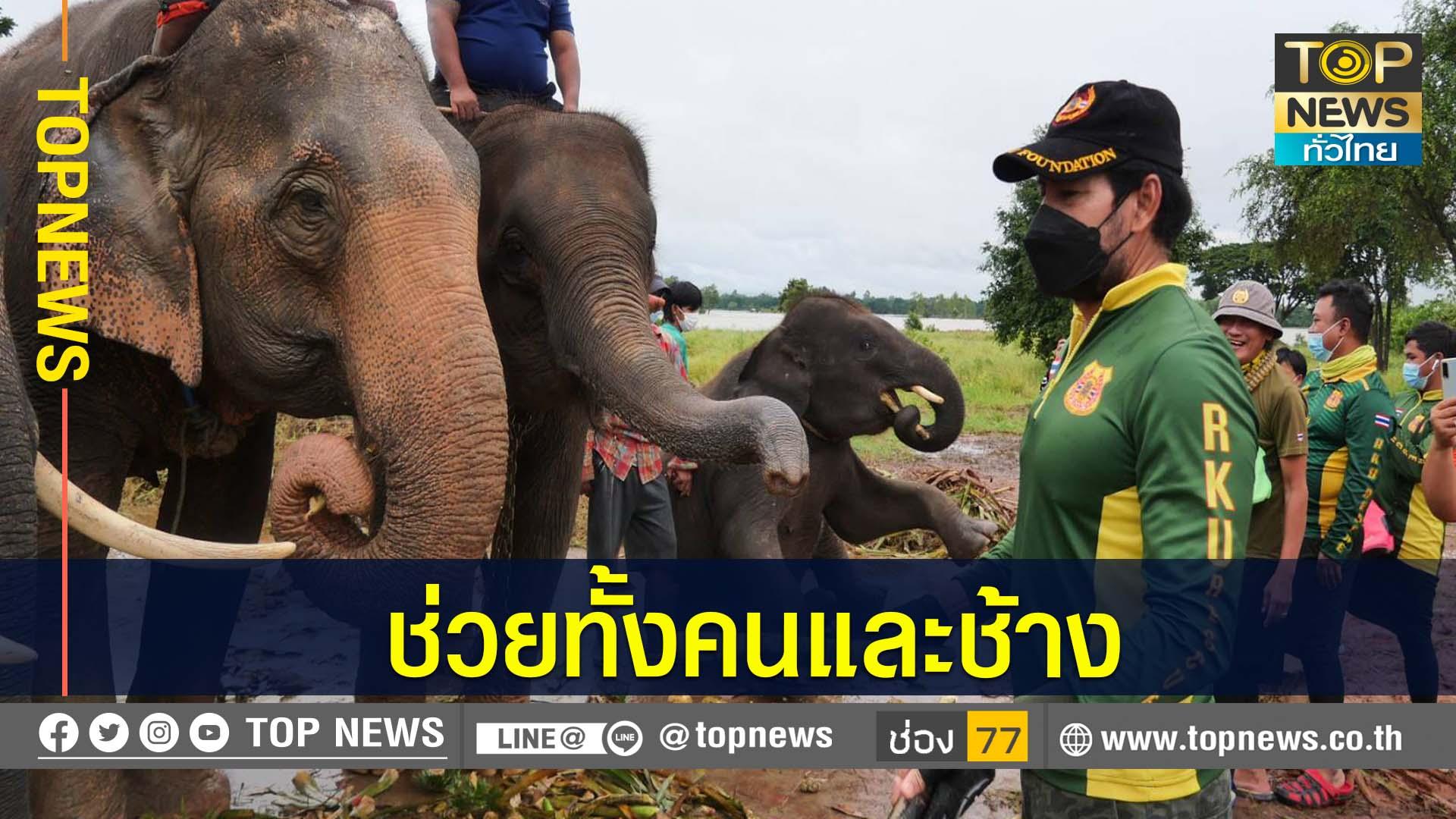 """""""บิณฑ์"""" พร้อมมูลนิธิร่วมกตัญญู รุดช่วยเหลือ ปชช.และช้าง ที่ประสบอุทกภัย ต.บ้านค่าย"""